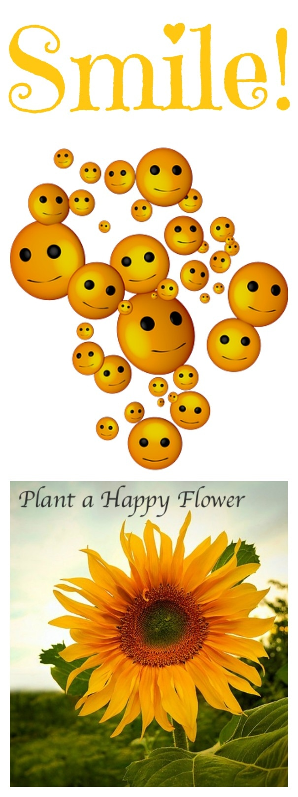 The Most Depressing Day of the Year: Happy Flower Smile